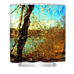 Riverwalk Shower Curtain by Terence Morrissey