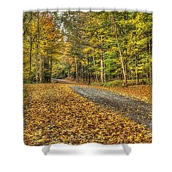 Road Into Woods Shower Curtain