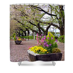 Shower Curtain featuring the photograph Road Of Flowers by Andrea Anderegg