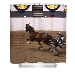 Shower Curtain featuring the photograph Road Pony At Speed by Carol Lynn Coronios