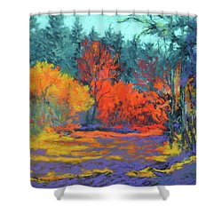 Shower Curtain featuring the painting Road To Deer Creek by Nancy Jolley