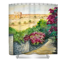 Road To Eastern Gate Shower Curtain