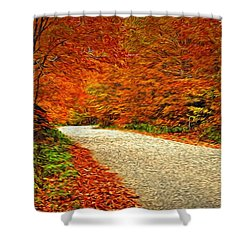 Road To Nowhere Shower Curtain by Bill Howard