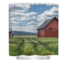 Road To Nowhere Shower Curtain by Sandra Bronstein