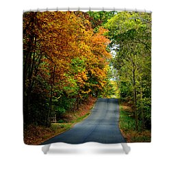 Road To Riches Shower Curtain by Carlee Ojeda