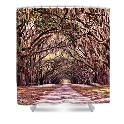 Road To The South Shower Curtain