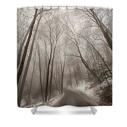 Road To Winter Shower Curtain by Karol Livote