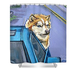 Road-trip - Dog Shower Curtain