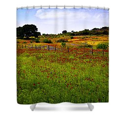 Roadside Flowers Shower Curtain by Tamyra Ayles