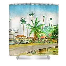 Roadside Food Stands Puerto Rico Shower Curtain by Frank Hunter