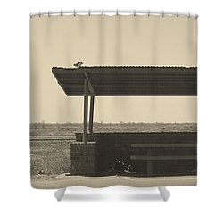 Roadside Rest Shower Curtain