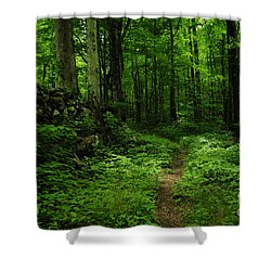 Shower Curtain featuring the photograph Roaring Fork Trail by Debbie Green