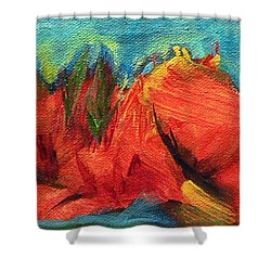 Roasted Rock Coast Shower Curtain by Elizabeth Fontaine-Barr