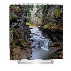 Robert Treman State Park Shower Curtain by Frozen in Time Fine Art Photography