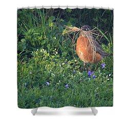 Robin Gathering For Nest Shower Curtain
