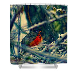 Robins Patience Art Shower Curtain by Lesa Fine