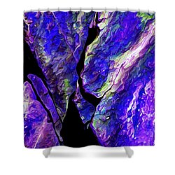 Rock Art 19 Shower Curtain