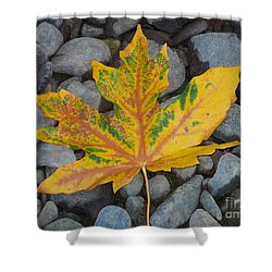 Shower Curtain featuring the photograph Rock Creek Leaf by Chalet Roome-Rigdon