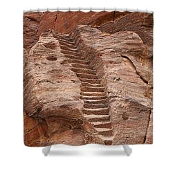 Rock Cut Stairway Of The Street Of Facades Petra Jordan Shower Curtain by Robert Preston