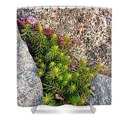 Shower Curtain featuring the photograph Rock Flower by Meghan at FireBonnet Art