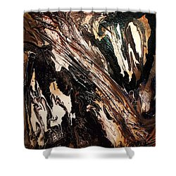 Rock Formation 1 Shower Curtain