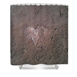 Rock Heart Shower Curtain by Claudia Goodell