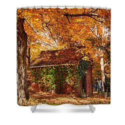 Shower Curtain featuring the photograph Rock Of Ages Surrouded By Color by Jeff Folger