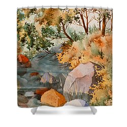 Rock Reflections Shower Curtain by Teresa Ascone