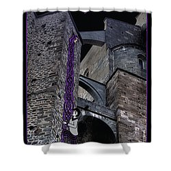 Rockin' Raven Celtic Rapunzel Shower Curtain