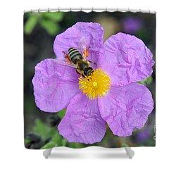 Rockrose Flower With Bee Shower Curtain by George Atsametakis