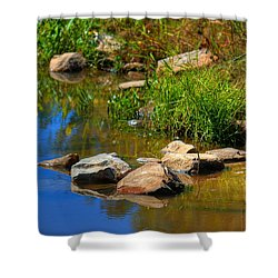 Shower Curtain featuring the photograph A Clear Reflection by Ester  Rogers