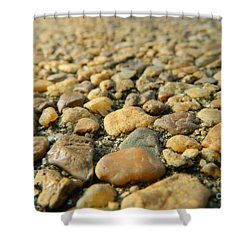 Rocks On My Path Shower Curtain by Andrea Anderegg