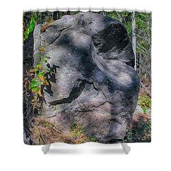 Rocky Ancestor Shower Curtain by Omaste Witkowski