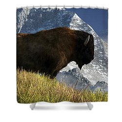 Rocky Mountain Buffalo Shower Curtain