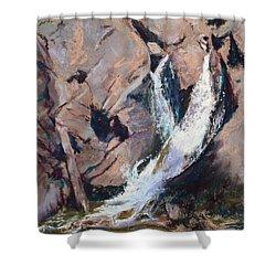 Rocky Mountain Cascade Shower Curtain by Mary Benke
