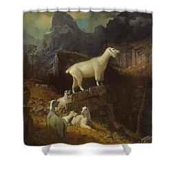 Rocky Mountain Goats Shower Curtain by Albert Bierstadt
