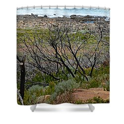 Rocky Outcrop Shower Curtain