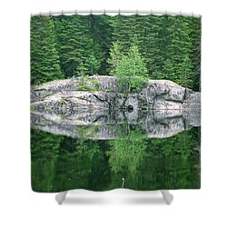 Rocky Reflection Shower Curtain