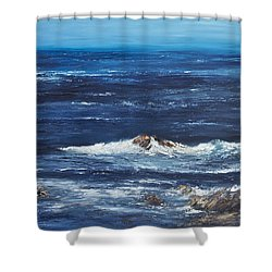 Rocky Shore Shower Curtain by Valerie Travers