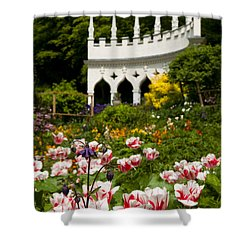 Rococo Spring Shower Curtain by Anne Gilbert