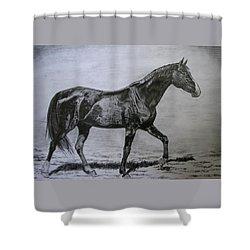 Roko Shower Curtain by Melita Safran