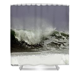 Shower Curtain featuring the photograph Rolling In The Deep by Debra Forand