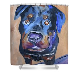 Shower Curtain featuring the painting Roman by Donna Tuten