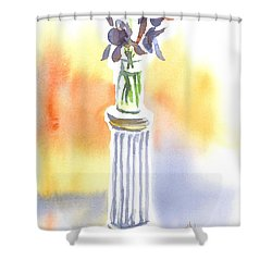Roman Holiday Shower Curtain by Kip DeVore
