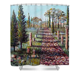 Roman Road Shower Curtain by Lou Ann Bagnall