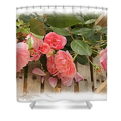Romance And Roses Shower Curtain by Liz  Alderdice