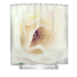 Romance In A Rose Shower Curtain