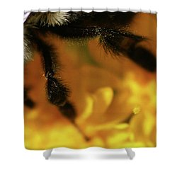Romancing Yellow Shower Curtain by Linda Shafer