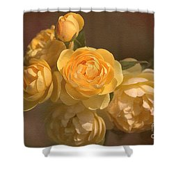 Romantic Roses Shower Curtain by Joy Watson