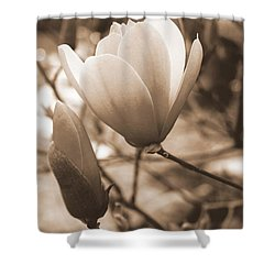 romantic vintage magnolia shower curtain by kay novy